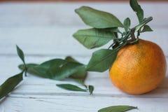 与叶子的成熟蜜桔在一个白色木板 图库摄影
