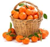 与叶子的成熟蜜桔在篮子 免版税库存照片