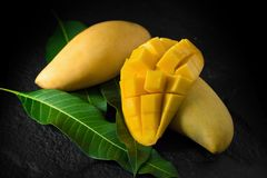 与叶子的成熟金黄芒果在黑暗的背景 免版税库存照片