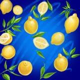 与叶子的拉长的黄色柠檬在蓝色背景 免版税库存图片