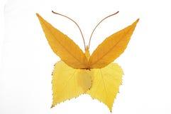 与叶子的拼贴画绘画--蝴蝶 免版税图库摄影