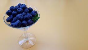 与叶子的新鲜的未加工的有机蓝莓在玻璃酒杯 免版税库存照片