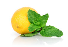 与叶子的新鲜的柠檬绿化薄菏,在白色背景 库存照片