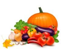 与叶子的新鲜的秋天蔬菜 免版税库存图片