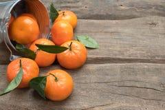 与叶子的新鲜的蜜桔 免版税图库摄影