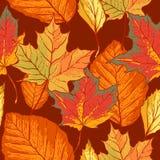 与叶子的无缝的样式 免版税库存照片