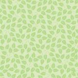与叶子的无缝的模式在绿色 免版税库存照片