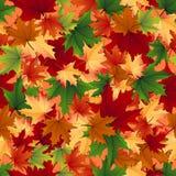 与叶子的无缝的模式 库存照片