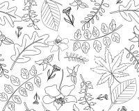 与叶子的无缝的秋天传染媒介样式 向量例证