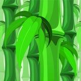 与叶子的无缝的竹样式 向量例证