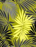 与叶子的热带无缝的样式 库存例证
