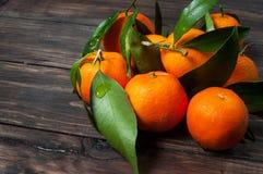与叶子的柑桔普通话在黑暗的木背景 库存照片