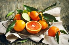 与叶子的柑橘水果 免版税库存照片