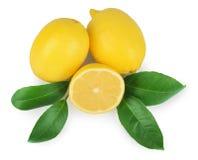 与叶子的柠檬在白色 免版税库存照片
