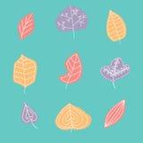 与叶子的样式,抽象叶子纹理 库存照片