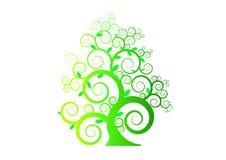 与叶子的样式绿色树在白色背景,传染媒介,例证,图象 库存照片