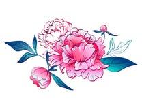 与叶子的桃红色牡丹 也corel凹道例证向量 免版税库存图片