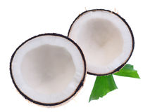 与叶子的椰子在白色背景 免版税库存图片