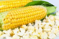 与叶子的玉米和玉米花 免版税库存图片