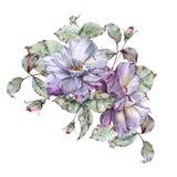 与叶子的玫瑰在花束 背景查出的白色 免版税库存照片