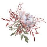 与叶子的玫瑰在花束 背景查出的白色 图库摄影