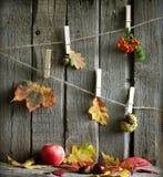 与叶子的秋天摘要在葡萄酒板 免版税库存照片