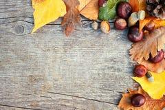 与叶子的秋天框架,顶视图 图库摄影