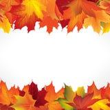 与叶子的秋天框架 秋天叶子无缝的边界 免版税库存图片