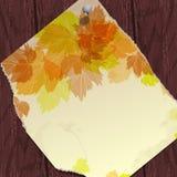 与叶子的秋天背景。 图库摄影