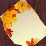与叶子的秋天背景。 库存照片
