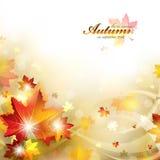 与叶子的秋天背景 免版税库存图片