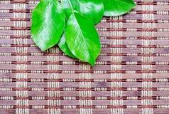 与叶子的竹地毯 库存图片