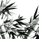 与叶子的竹子 库存例证