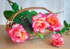 与叶子的美丽的大玫瑰在tabl的一个柳条筐 库存图片