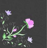 与叶子的花漩涡在灰色背景 邀请卡片desig 库存照片