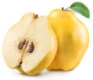 与叶子的苹果计算机柑橘 文件包含裁减路线 免版税库存照片