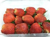 与叶子的草莓 查出 免版税库存图片