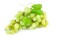 与叶子的葡萄在白色背景 免版税库存图片