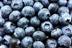 与叶子的蓝莓 免版税库存图片