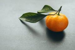 与叶子的蜜桔在灰色背景 库存图片