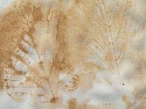 与叶子的蜡染布织品 免版税库存图片