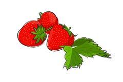 与叶子的被绘的草莓 库存照片