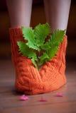 与叶子的被编织的羊毛温暖的袜子 库存照片