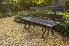 与叶子的长凳在一个安静的公园的地板上 库存图片