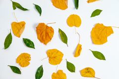 与叶子的顶视图五颜六色的秋天样式 平的位置 季节c 免版税库存图片