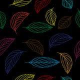 与叶子的高雅无缝的样式,导航花卉例证 图库摄影
