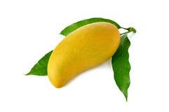 与叶子的整个成熟芒果在白色 免版税库存照片