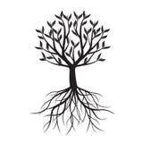 与库存的黑树免图片叶子版税椎形的包装设计图片