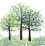 与叶子的绿色树 免版税库存图片