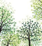 与叶子的绿色树 图库摄影